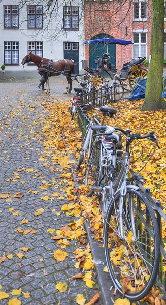 Begijnhof - Brugge, Belgium - November 2, 2010
