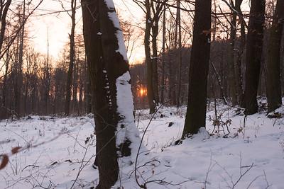 2017-01-20 góry Sowie