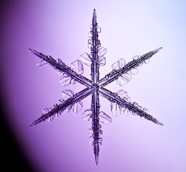 snowflake-3037-Edit.jpg