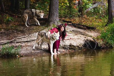 Ironwood Wolves