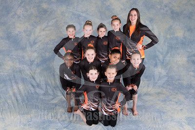 Team 2016 - Girls Xcel Bronze and Silver