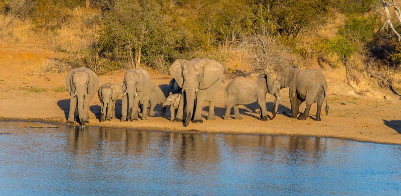 Zuid Afrika 2015 051.jpg