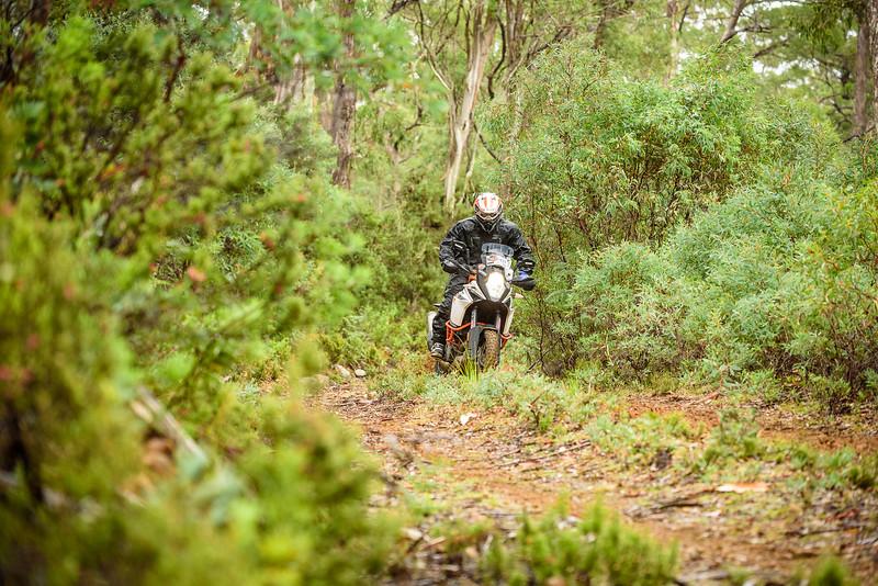 2019 KTM Australia Adventure Rallye (448).jpg
