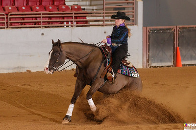 Thursday Novice Horse Set 10 91-101