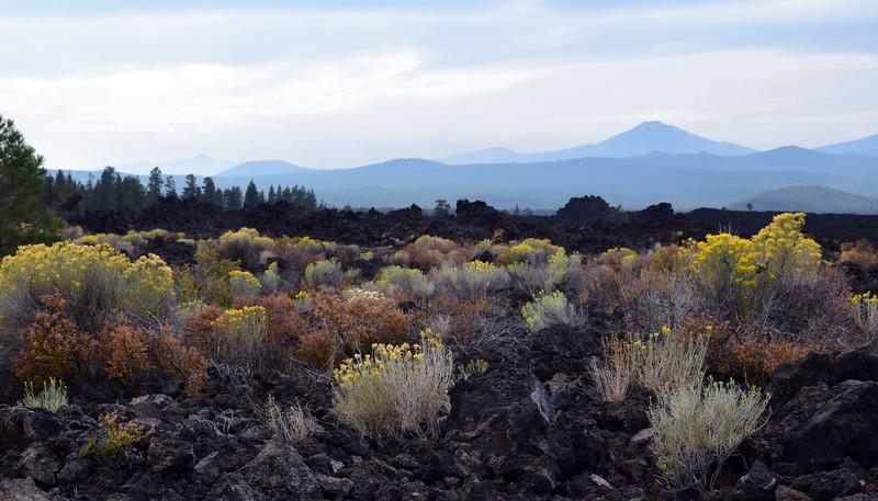 Newberry Volcanic (13).jpg