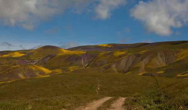 Carizzo Monument, Temblor Range
