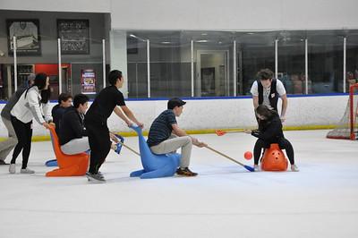 Ice Polo