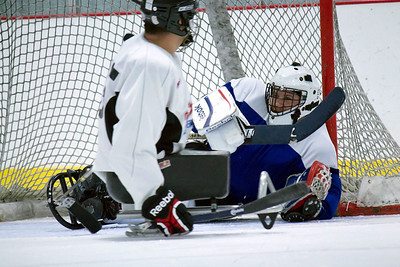 Texas Sled Hockey 23 Mar 2014
