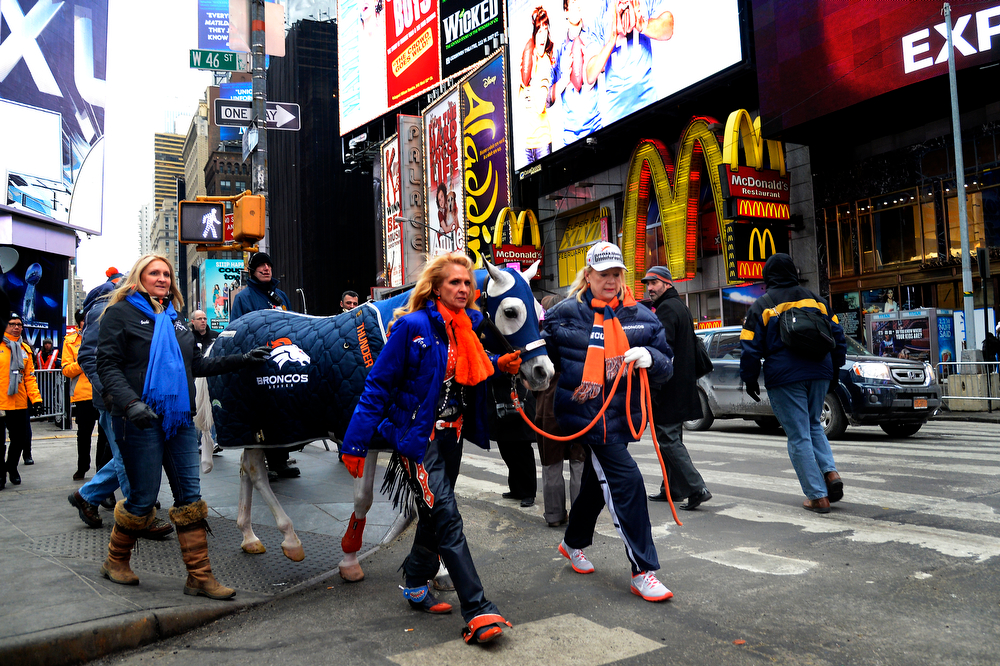 . Rider Annie Wegener  (left) and Sharon Magness Blake with her horse, Broncos mascot Thunder, an Arabian gelding mascot on their way to Times Square on January 31, 2014 New York, NY. (Photo By Joe Amon/The Denver Post)      NEW YORK, NY. - January 31: Sharon Magness Blake with her horse, Broncos mascot Thunder, which was transported into Newark Airport by FedEx plane. Annie Wegener rides Thunder during a home game at Mile High Stadium. Thunder, the Broncos� Arabian gelding mascot, will lead the team onto the field at MetLife Stadium for the opening introductions to Super Bowl XLVIII in New York, NY. January 31, 2014 MODEL, CO. (Photo By Joe Amon/The Denver Post)