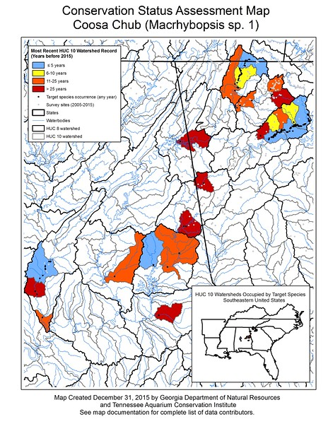 Conservation Status Assessment Map for Coosa Chub (Macrhybopsis sp. 1)