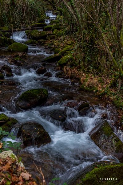 Cascata no rio Gresso