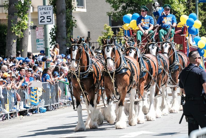 DUBS Parade 2017-11.JPG