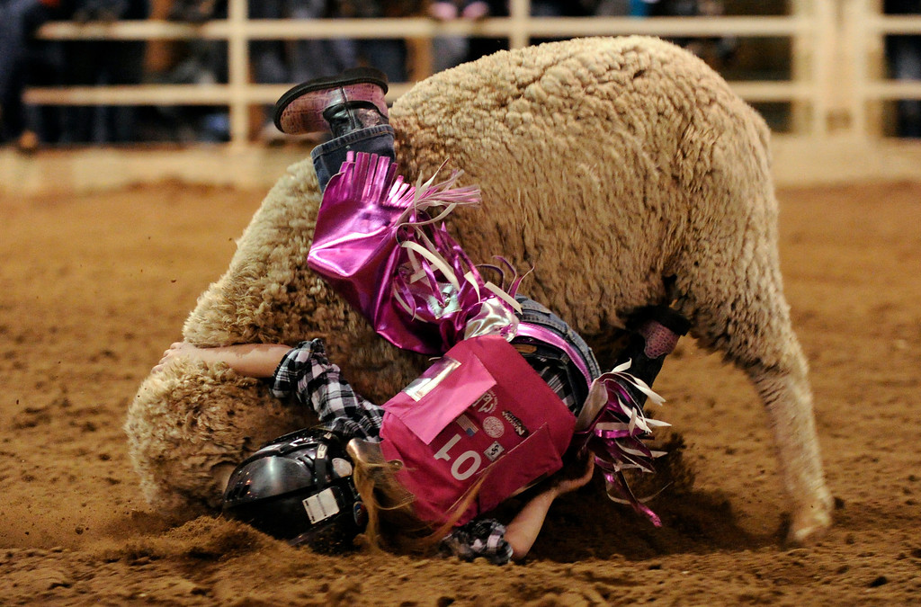 . Krystal Dill, 5, is in action during the mutton busting at National Western Stock Show in Denver, Colorado, Wednesday, January 11, 2012. Hyoung Chang, The Denver Post
