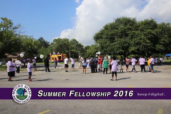 Summer Fellowship 2016
