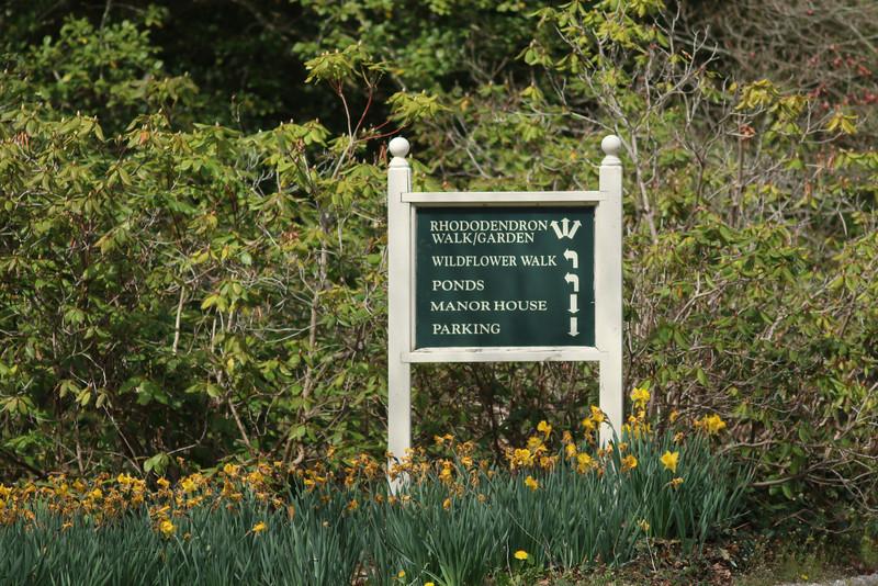 Bayard Cutting Arboretum, Great River, NY.