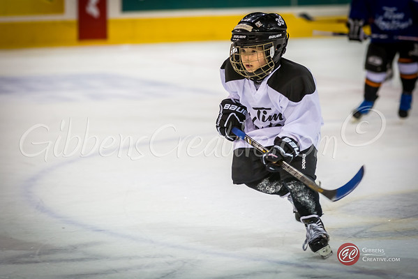 Timbits at the Otters 2/8/14