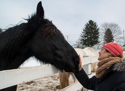 Nancy Milliken at Blue Star Equiculture