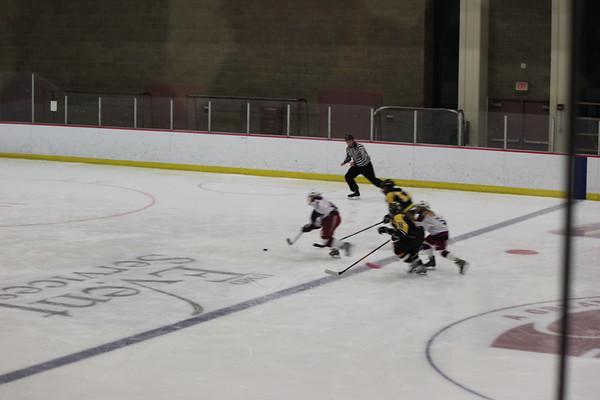 U12A Hockey 2011