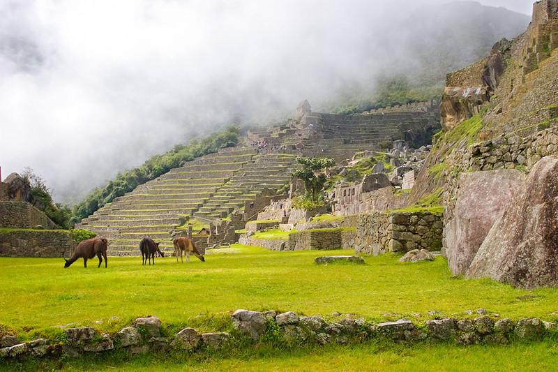 1229_Machu_Picchu.jpg