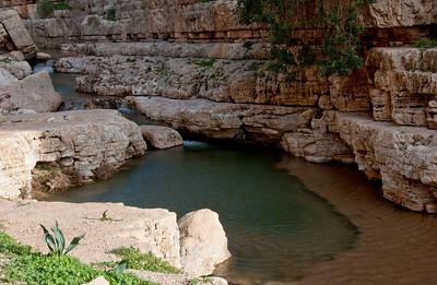Upper Wadi Kelt (between Ein Fara and Ein Fawar)