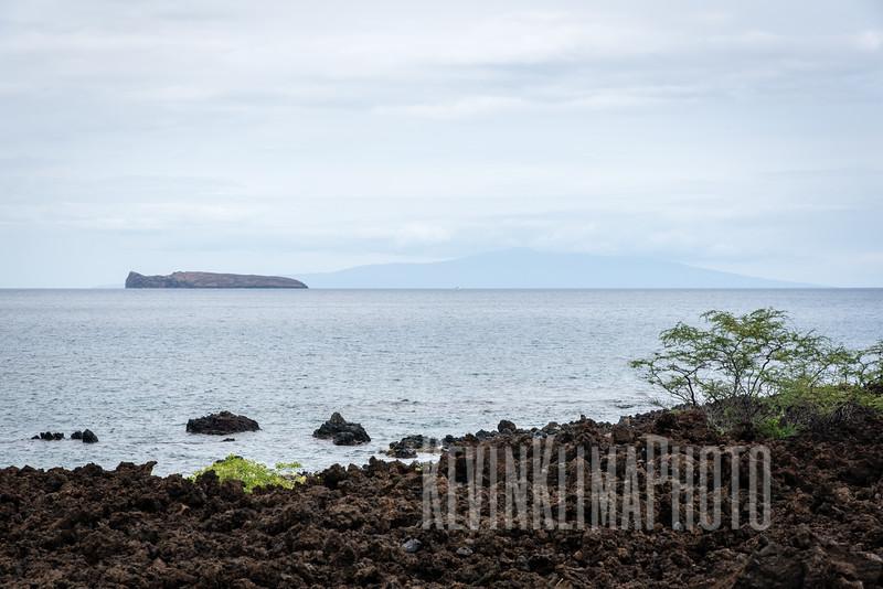 Maui2016-086.jpg