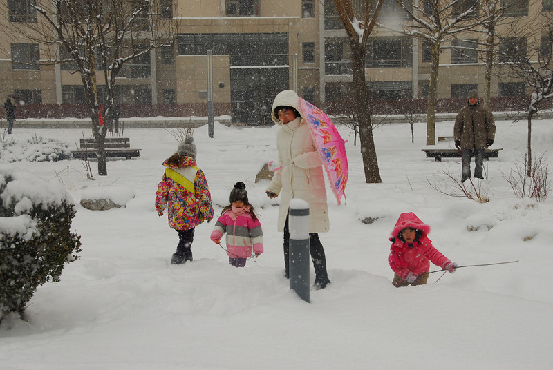 [20100103] 1st 2010 Snow in Beijing (53).JPG