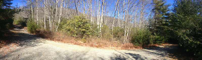 Panthertown Valley-Deep Gap Trail Junction