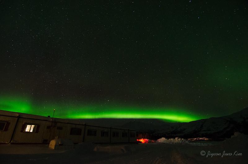 USA-Alaska-Coldfoot-Aurora-3441.jpg