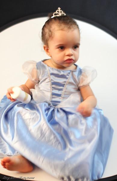 2014 - Sophia Cinderella