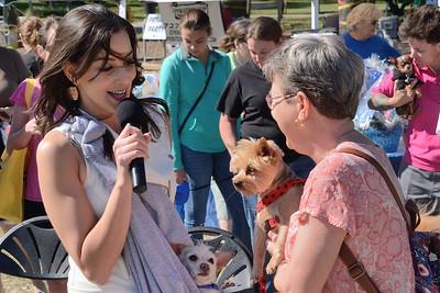 LCP Dog Festival