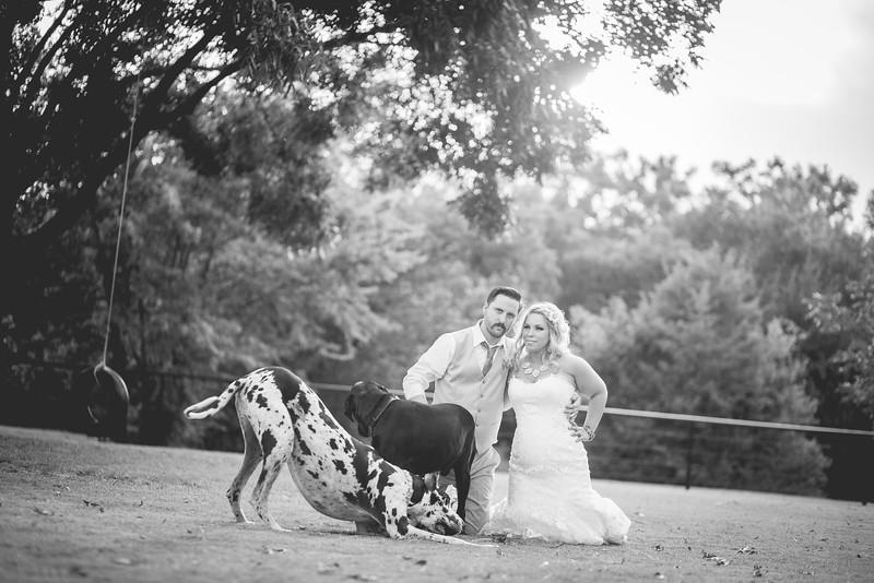 2014 09 14 Waddle Wedding-896.jpg