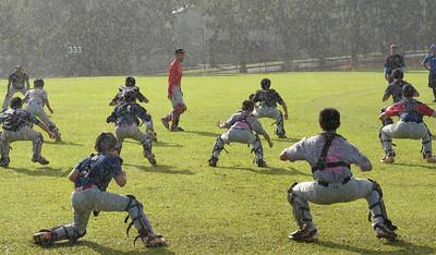 Baseball Catcher's Clinic