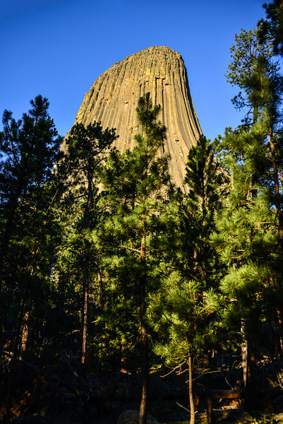 1 - Devils Tower back side 2.jpg