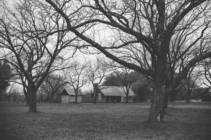 Johnson Settlement