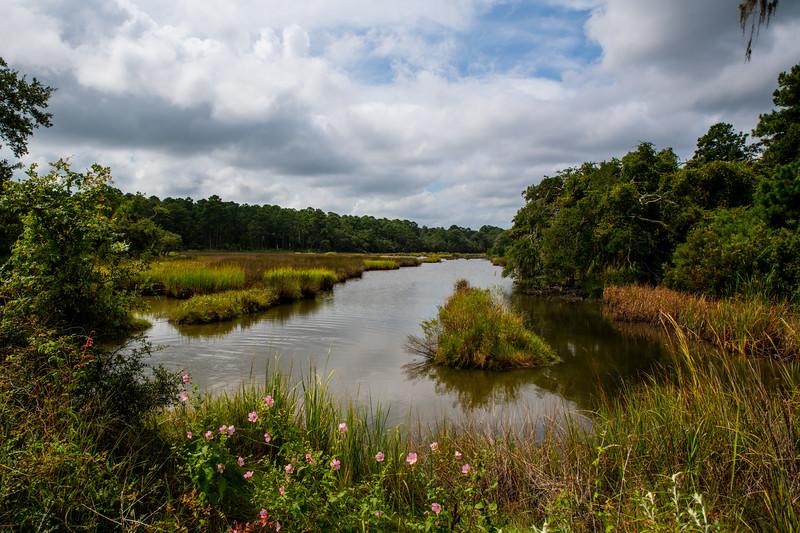 Botany Bay Wildlife Preserve, Edistow Island, South Carolina