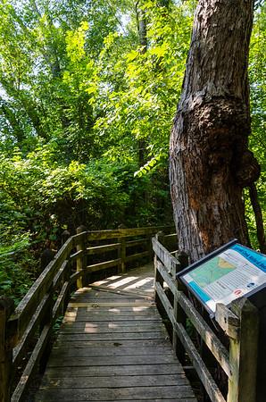 Pershing State Park (09.03.17)