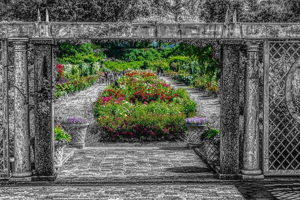 Brooklyn Botantical Garden