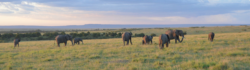 East Africa Safari 184.jpg