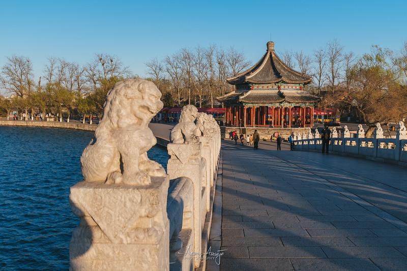 BeijingMarch2019-53.jpg