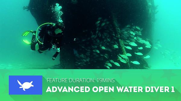 SDSDA Advanced Open Water Diver