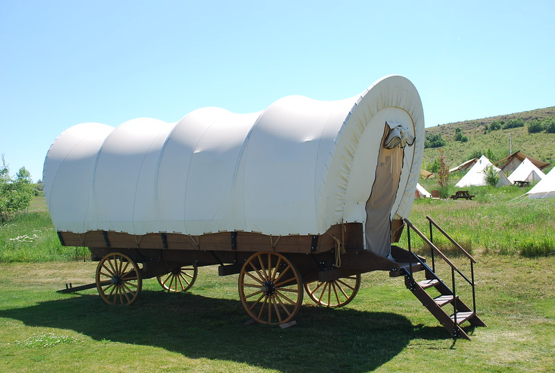 Covered conestoga wagon on green landscape