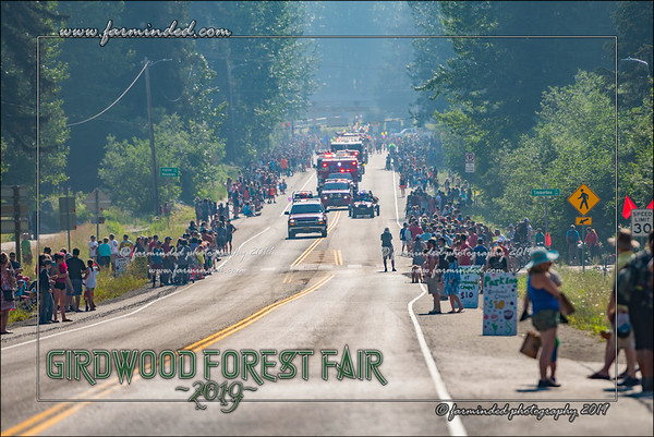 Forest Faire