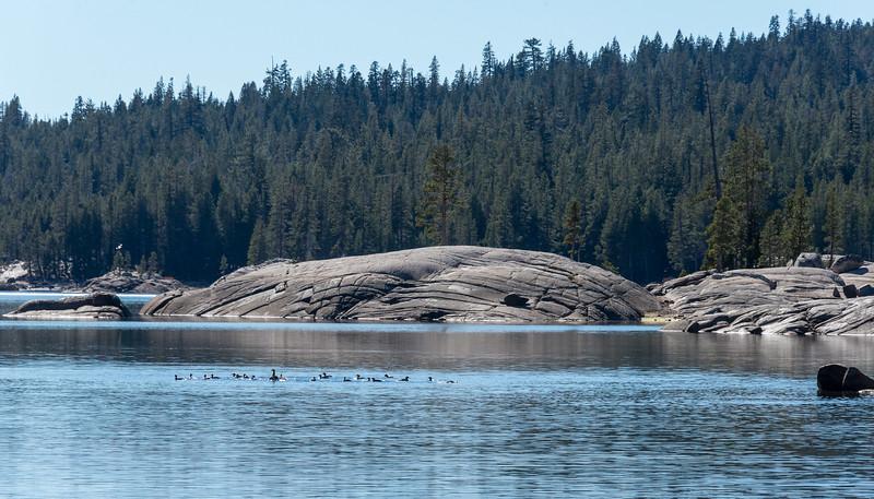 20171021-Lake Alpine-1748-2.jpg