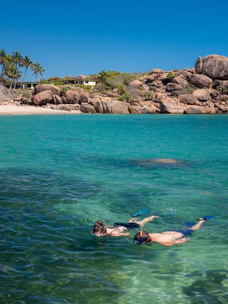 Snorkelling at Horseshoe Bay, Bowen