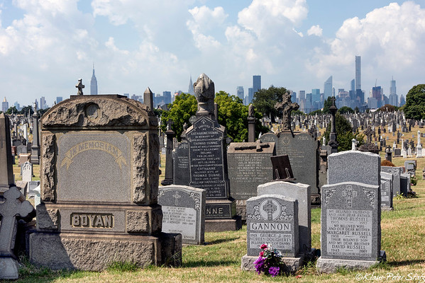Calvary Cemetery 2015