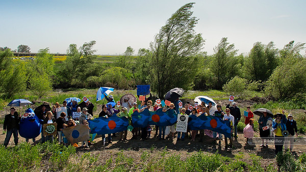 Flash Flood Mob at the Yolo Bypass 5/5/2012