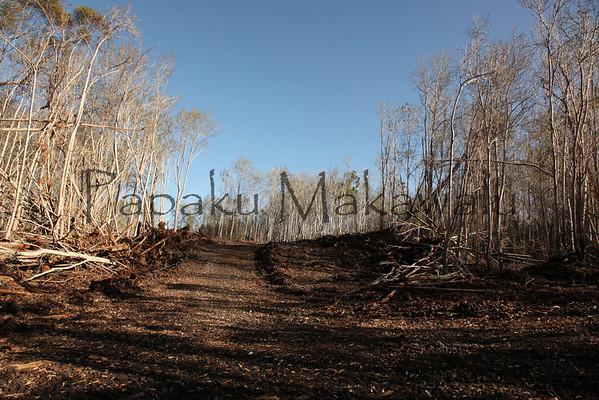 Honaunau - Fire 2010