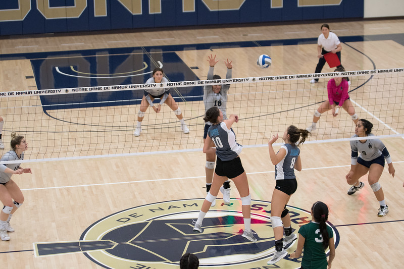 HPU Volleyball-93118.jpg
