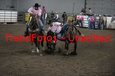 Steer Wresting Finals