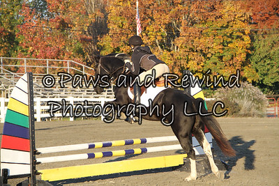 Sussex County Benefit Show October 26, 2013